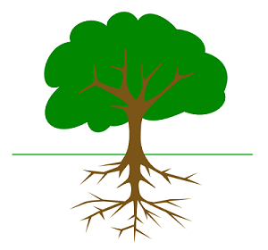 Ancestry Roots